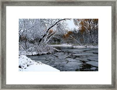 Winter Wonderland Framed Print by Larry Trupp