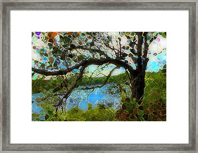 Wishing Tree Framed Print