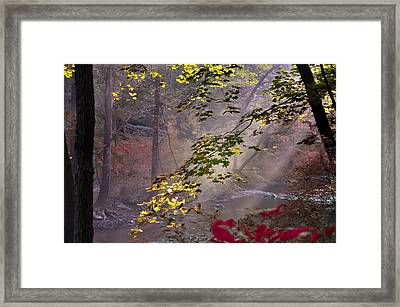 Wissahickon Autumn Framed Print by Bill Cannon