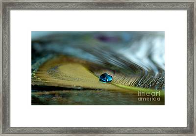 With You Framed Print by Krissy Katsimbras