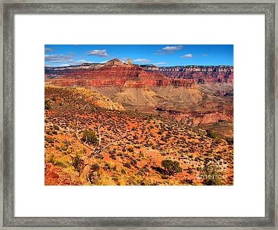 Within The Canyon Framed Print