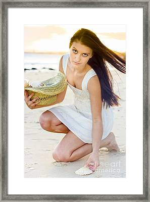 Woman Collecting Sea Shells At Sunset Framed Print