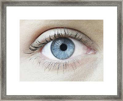 Woman's Eye Framed Print by Science Photo Library