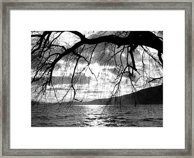 Wood Lake Sunset Framed Print by Will Borden
