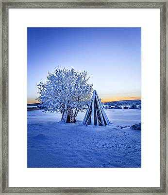 Wood Stacked And A Snow Covered Tree Framed Print