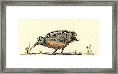 Woodcock Framed Print by Juan  Bosco