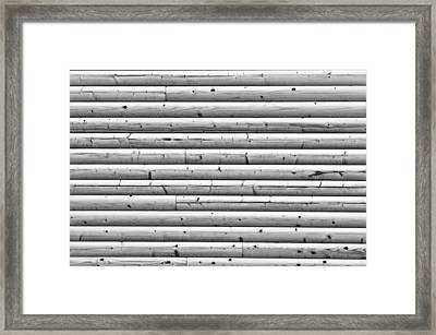 Wooden Wall Framed Print by Tom Gowanlock