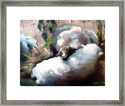 Wool Pillow Framed Print