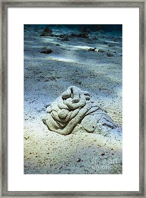 Worm Sand Cast Framed Print by Georgette Douwma