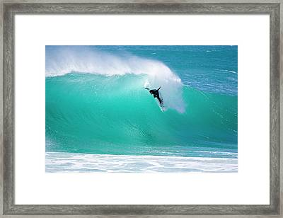 Wounded Gull Framed Print by Sean Davey