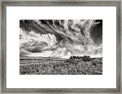 Written In The Wind Framed Print