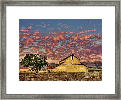 Yellow Barn Framed Print by Beth Sargent