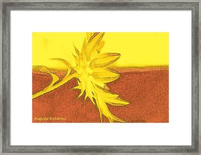 Yellow Flower Framed Print by Augusta Stylianou