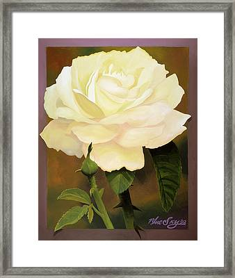 Yellow Rose Framed Print by Blue Sky