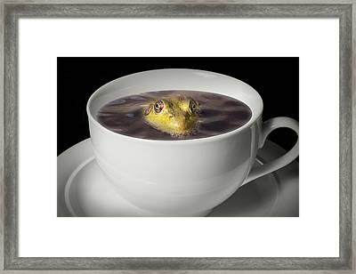Yikes There Is A Frog In My Java Framed Print by Randall Nyhof