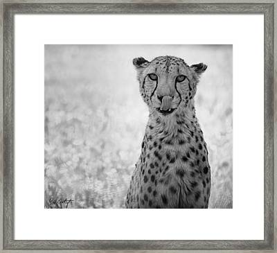 You Look Tasty Framed Print by Phill Doherty