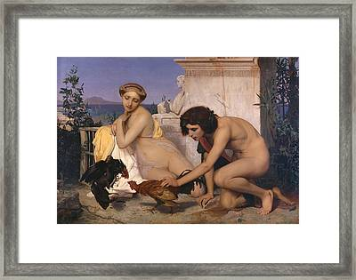 Young Greeks Attending A Cock Fight Framed Print by Jean-Leon Gerome