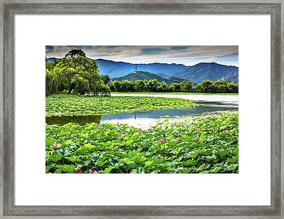Yue Feng Pagoda Pink Lotus Pads Garden Framed Print