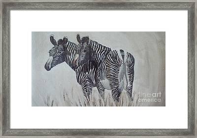 Zebras Framed Print by Audrey Van Tassell