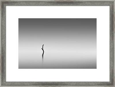 Zen Framed Print by Mihai Florea