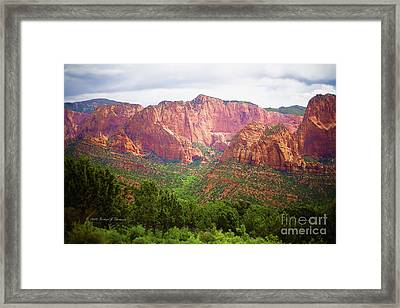 Zion National Park Framed Print