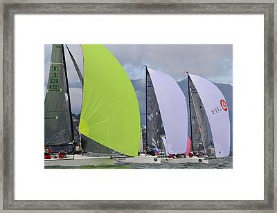 Bay Spinnakers Framed Print by Steven Lapkin