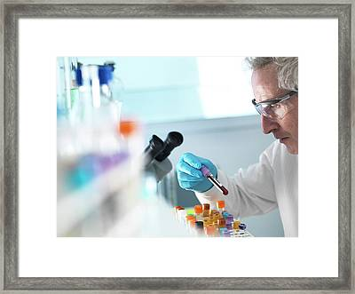 Blood Research Framed Print