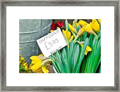 Daffodils Framed Print by Tom Gowanlock