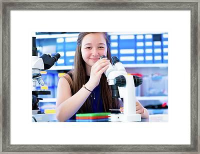 Girl Using Microscope Framed Print by Wladimir Bulgar/science Photo Library