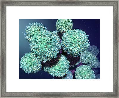Hiv Framed Print