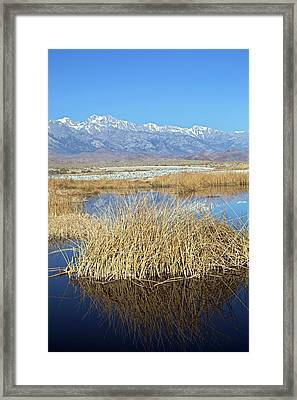 Owens Lake Framed Print by Jim West