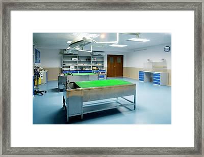 Safari Park Animal Hospital Framed Print by Pan Xunbin