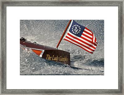 Stars And Stripes Framed Print by Steven Lapkin