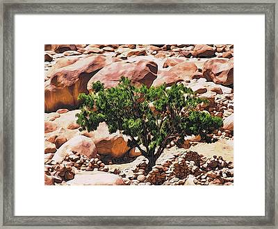 Stone Stories Framed Print by Alexandre Ivanov