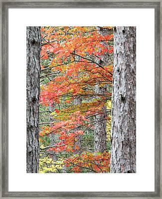 Usa, Michigan, Upper Peninsula Framed Print