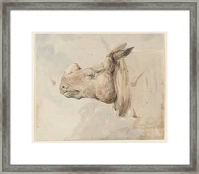 Rhinoceros Framed Print by MotionAge Designs