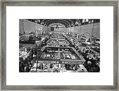 100 Years Framed Print by Halle Kirsch