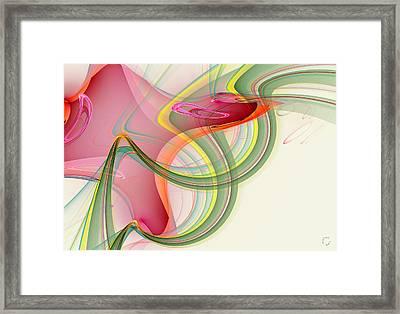1004 Framed Print by Lar Matre