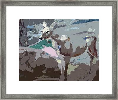100814 Doe In Red Woods California Framed Print