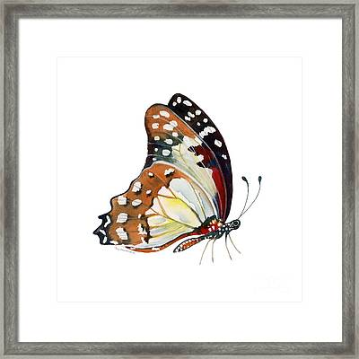 102 Perched White Lady Butterfly Framed Print