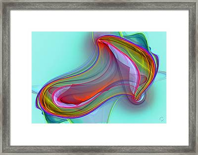 1029 Framed Print by Lar Matre