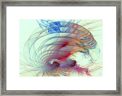 1062 Framed Print by Lar Matre