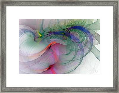 1063 Framed Print by Lar Matre