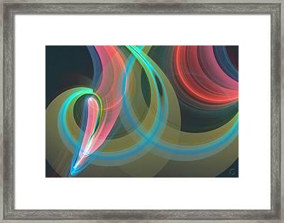 1069 Framed Print by Lar Matre