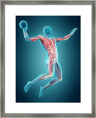Handball Player Framed Print by Sebastian Kaulitzki/science Photo Library