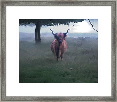 11. Highland Framed Print