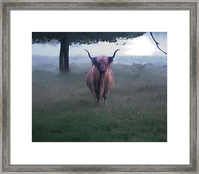 11. Highland Framed Print