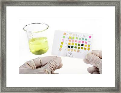 Home Urine Test Framed Print by Cordelia Molloy