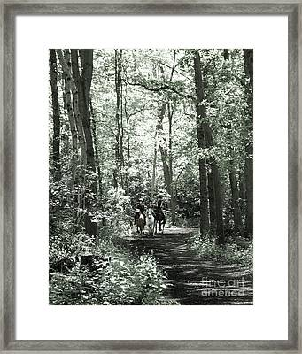 11 Framed Print by Laurence Power