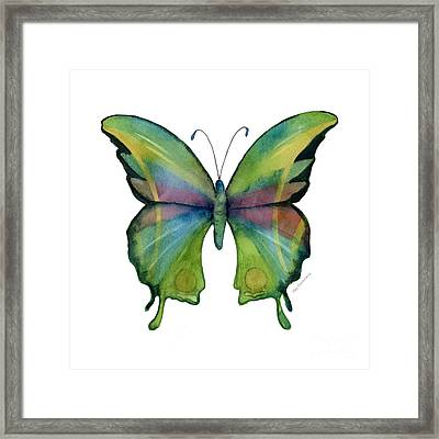 11 Prism Butterfly Framed Print by Amy Kirkpatrick